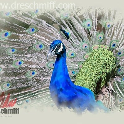Andre smith majestic peacock low rez