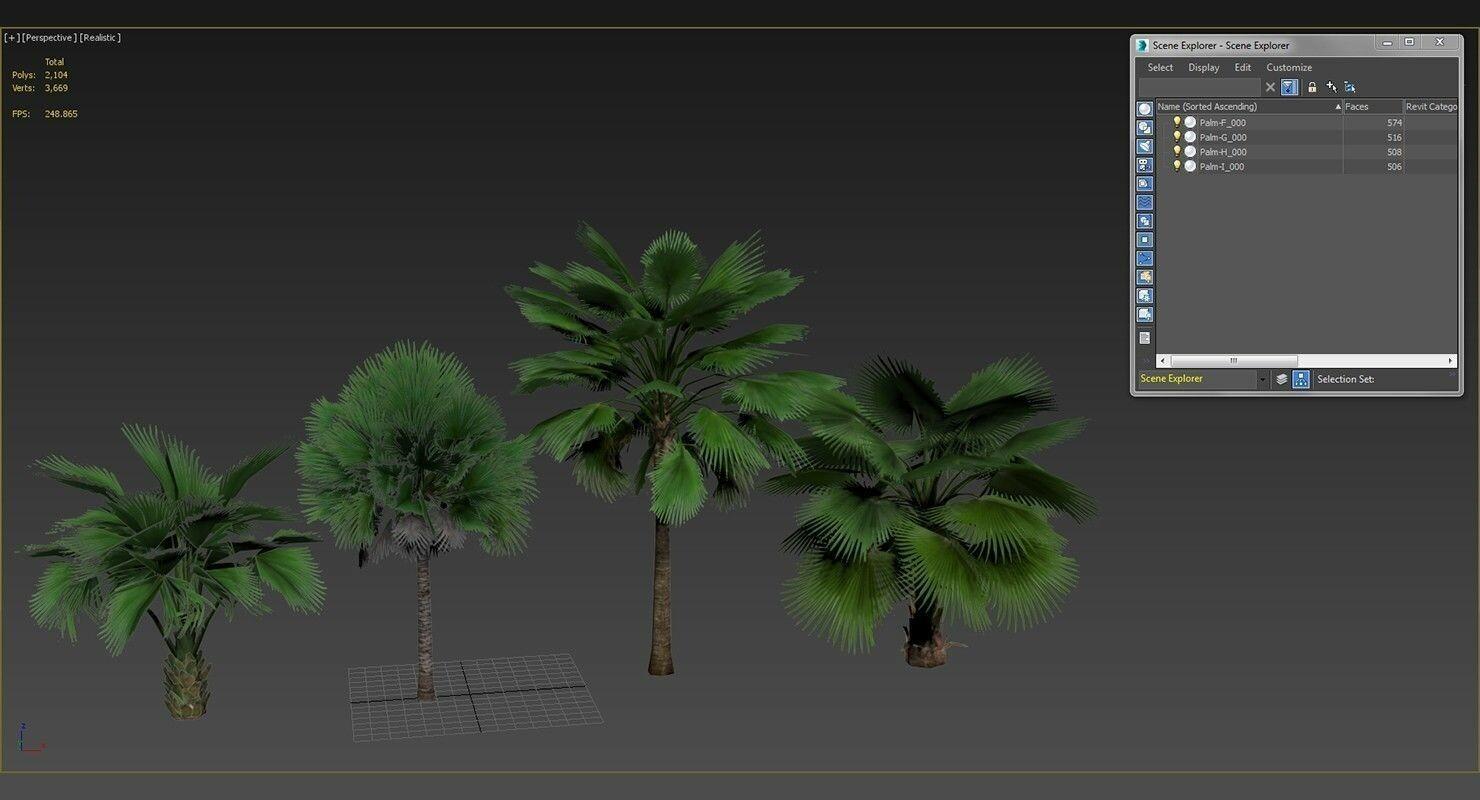 ashish sharma - Palm Trees Optimized