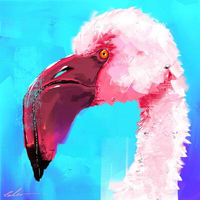 Sergey orlov flamingo