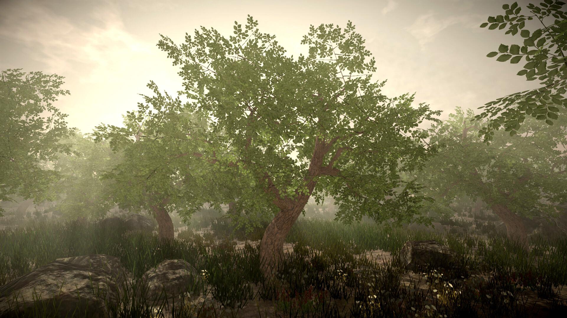 Jordan cameron jordan cameron tree 1