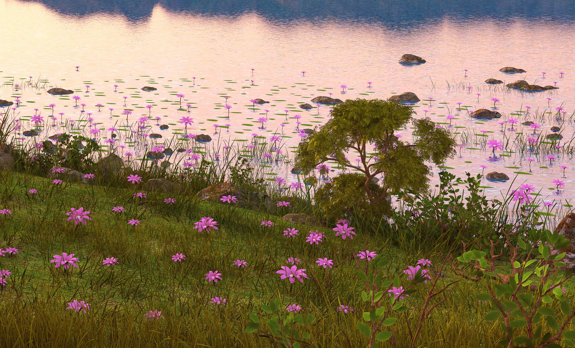 Marc mons landscape5