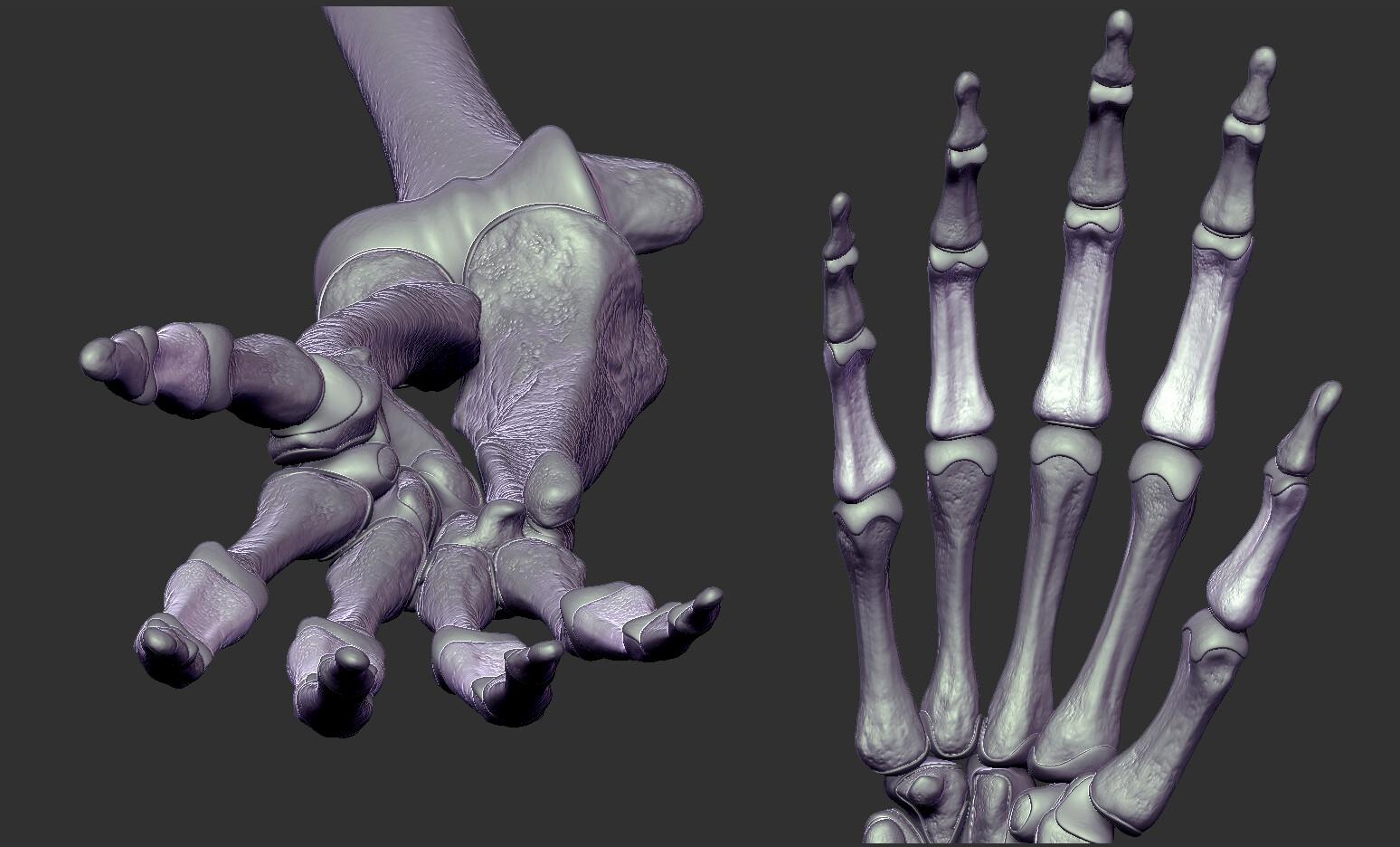 Andrey gritsuk hand 5s