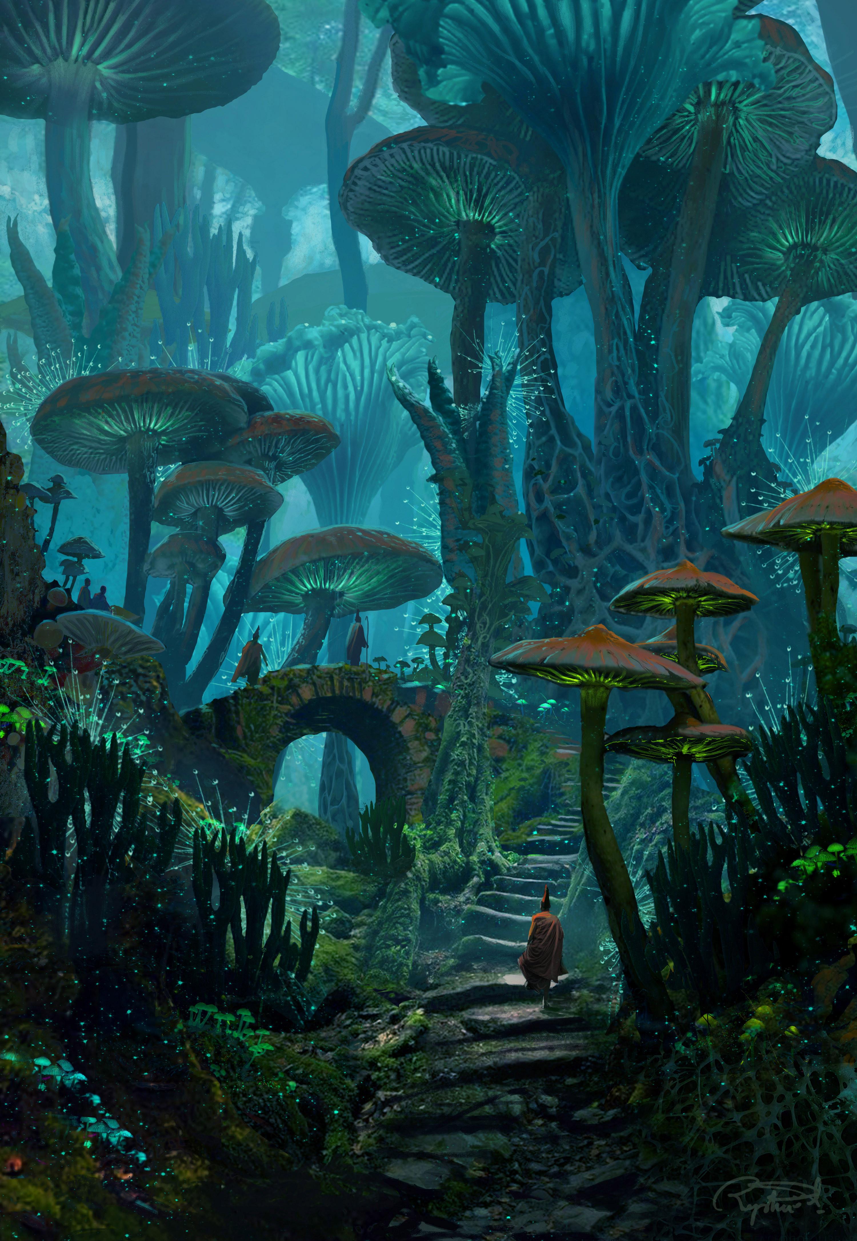 Bioluminescent Fungi
