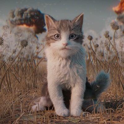 Yasin hasanian kitten c
