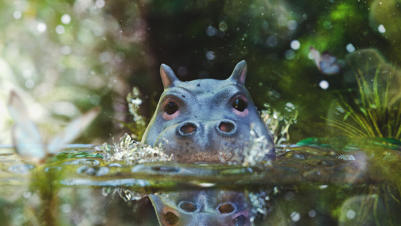 Baby Hippo having a swim!