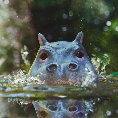 Baby Hippo having a swim!