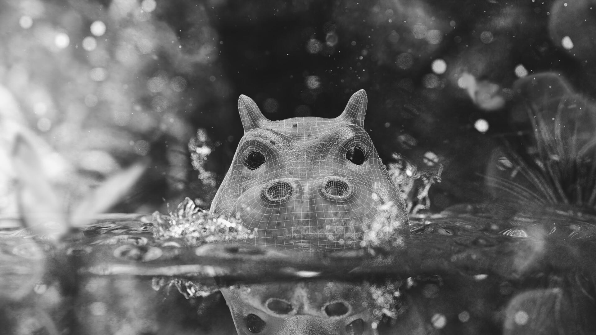 Michelangelo girardi ig hippo3