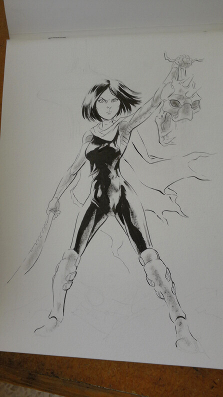 Inks just before painting