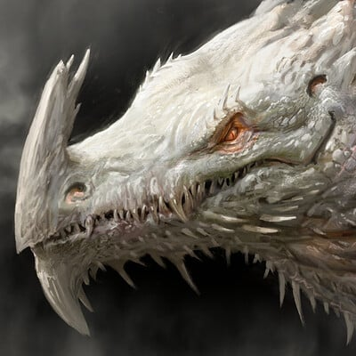 Antonio j manzanedo white dragon manzanedo