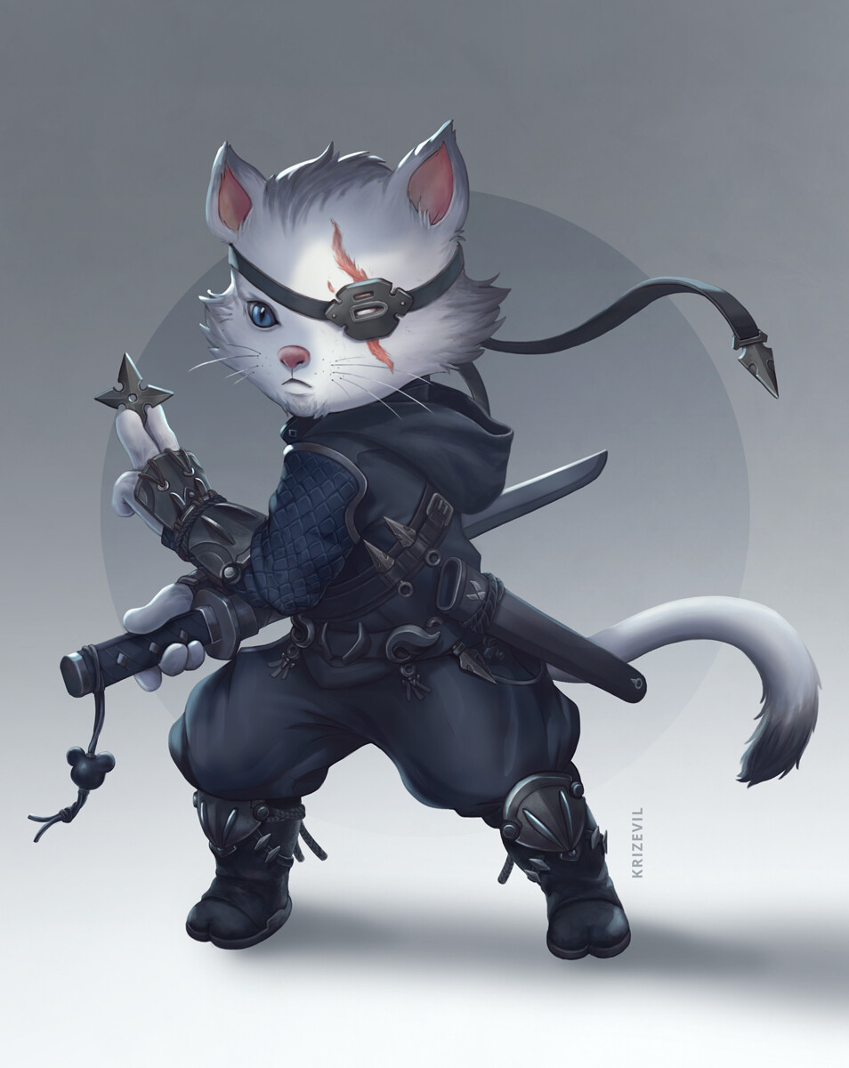 Christian villacis ninjacat