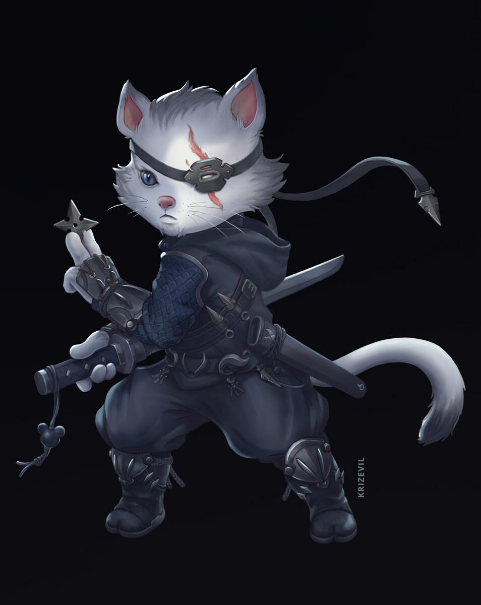 Christian villacis ninjacat3