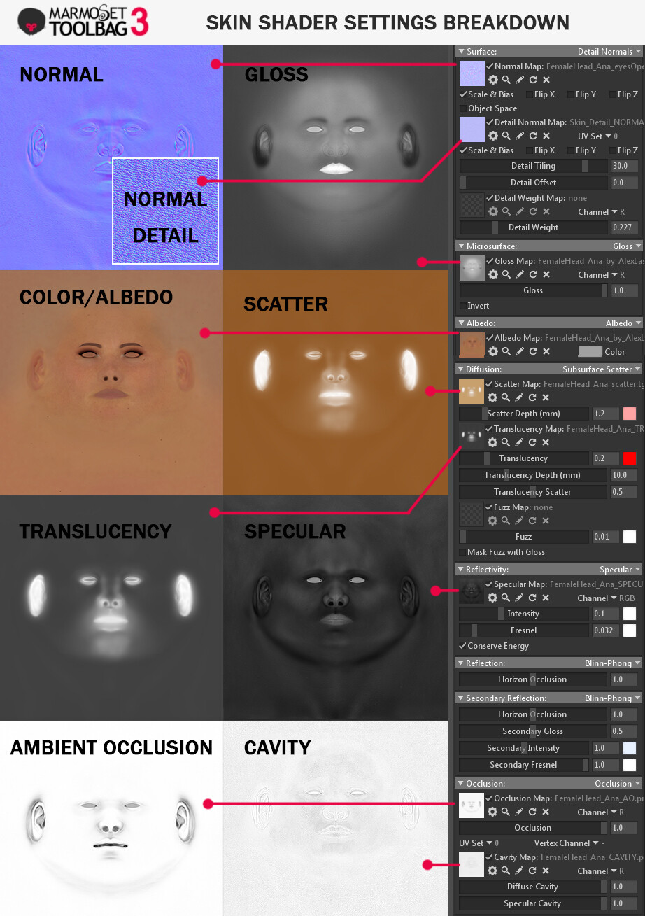 Marmoset Toolbag 3 - Skin Shader Settings