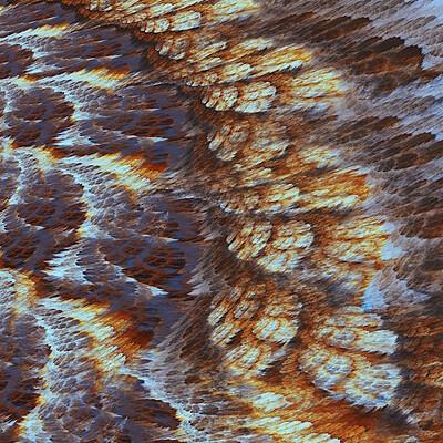 Andi greyscale butterflywing