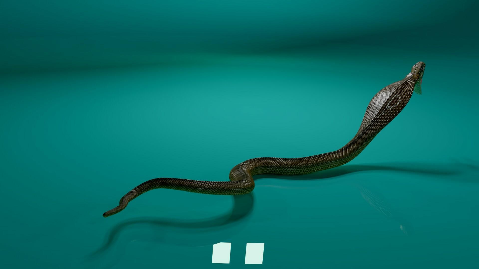 stephan plotnicov 3d model cobra snake 38
