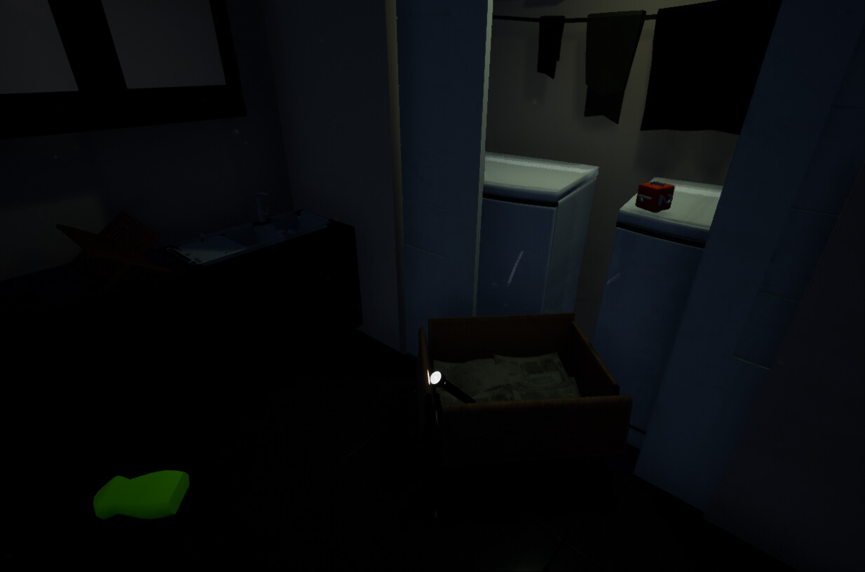 The laundry, door geometry, and light point towards the flashlight.