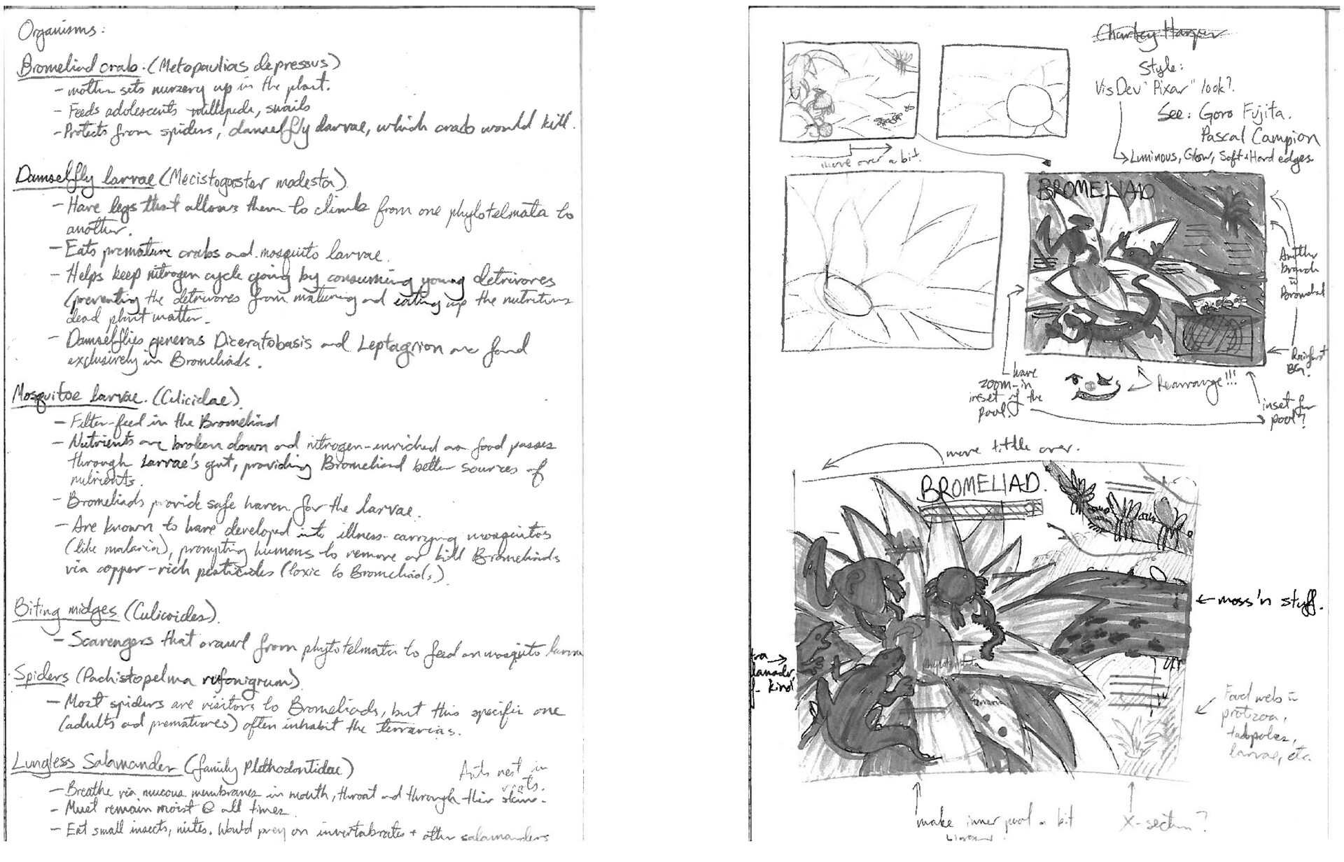 Research and initial thumbnails