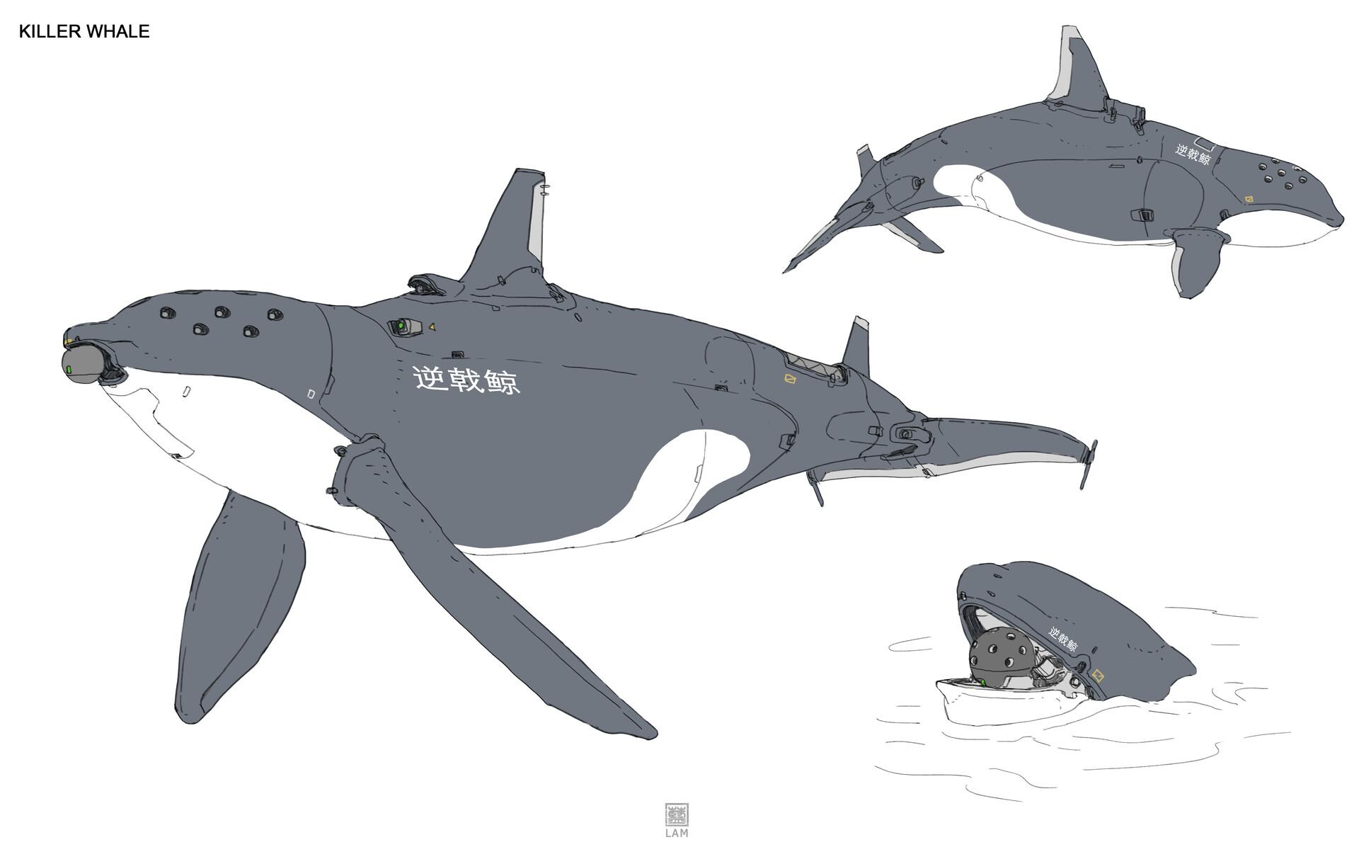 Sheng lam 5 killer whale