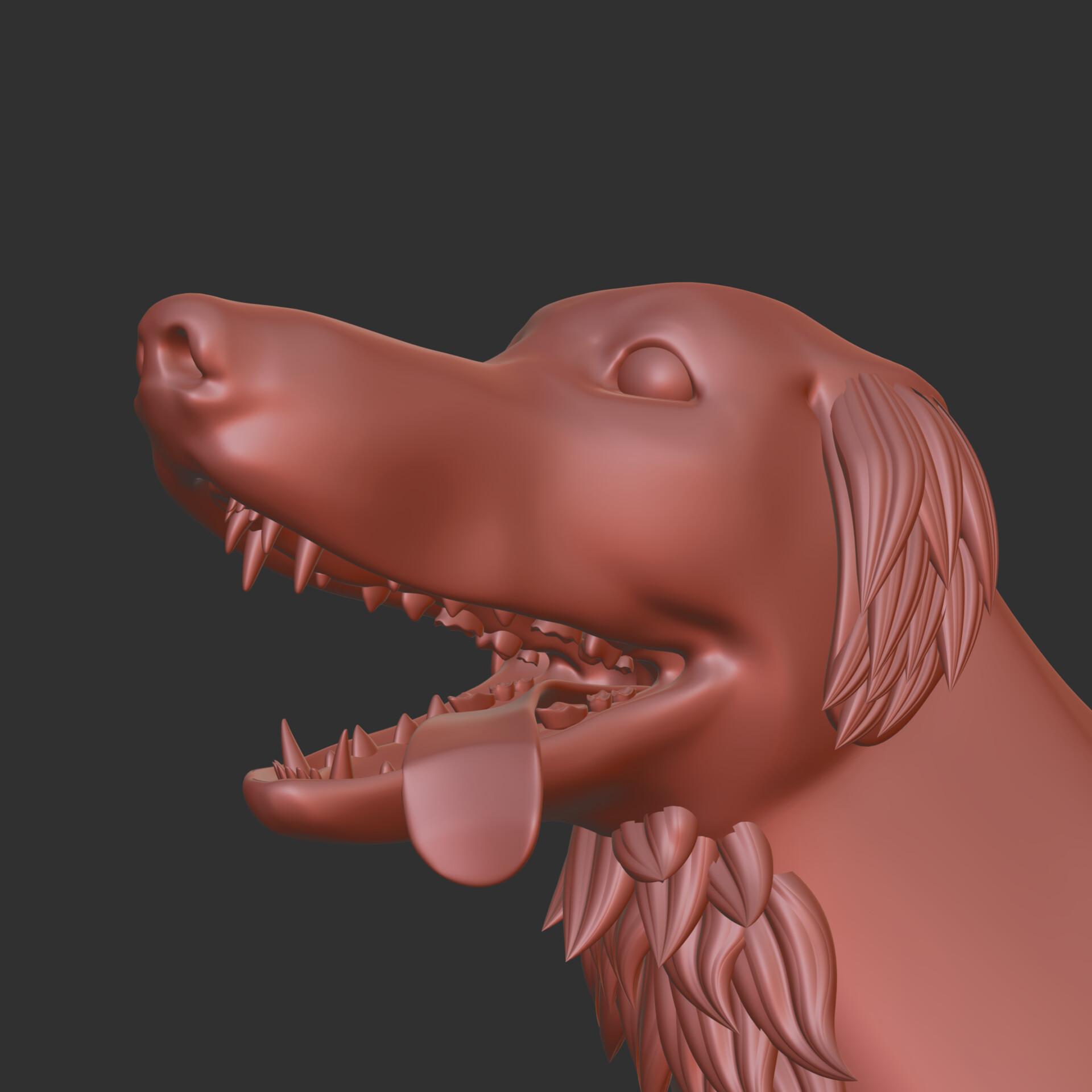 Ewoud van der werf matcapdog
