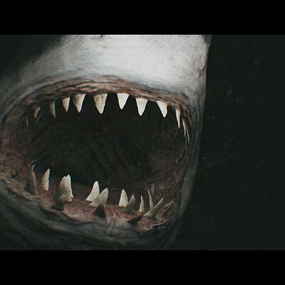 Shota uehara shark attack fix