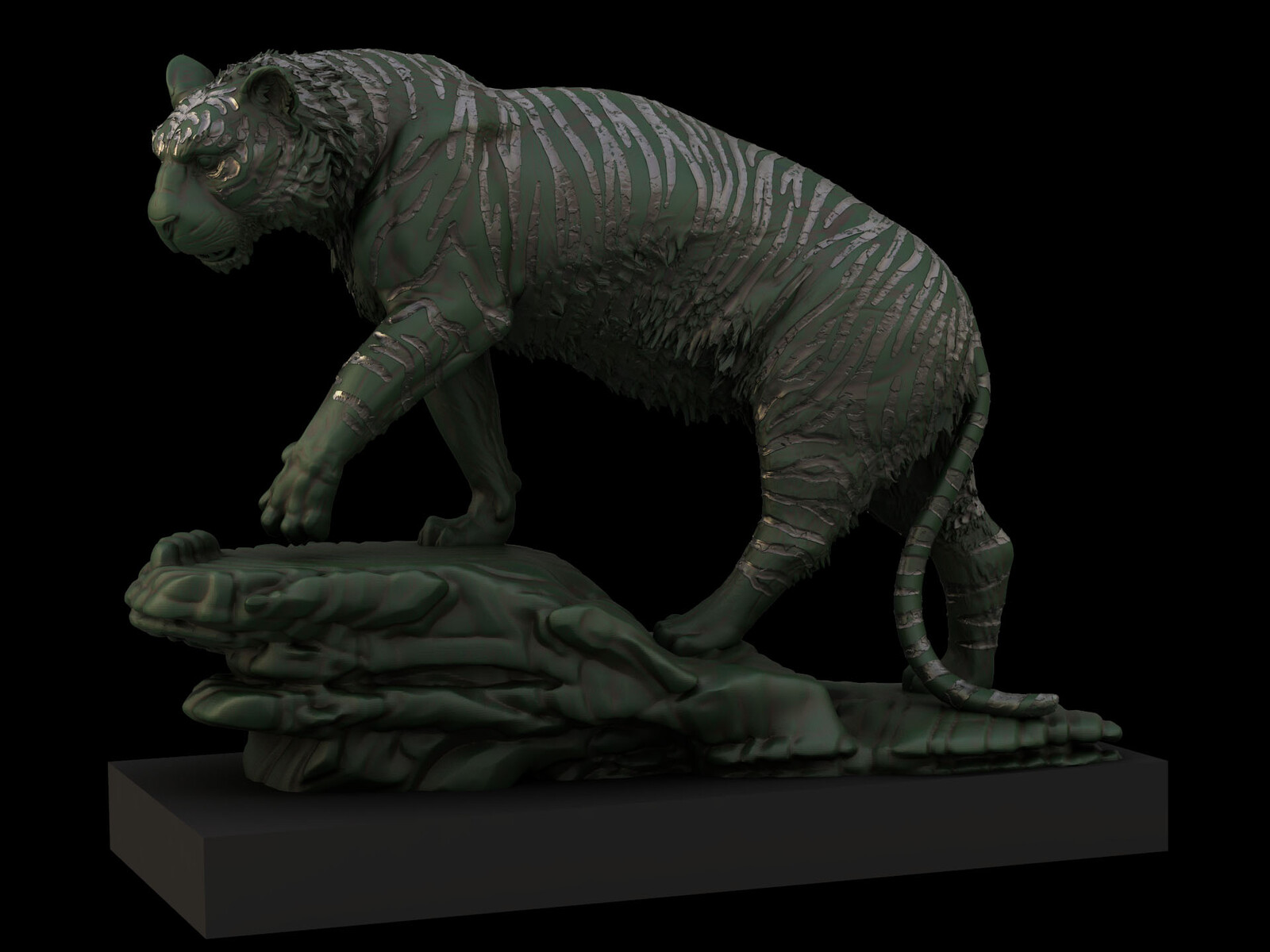 Tiger speed sculpt