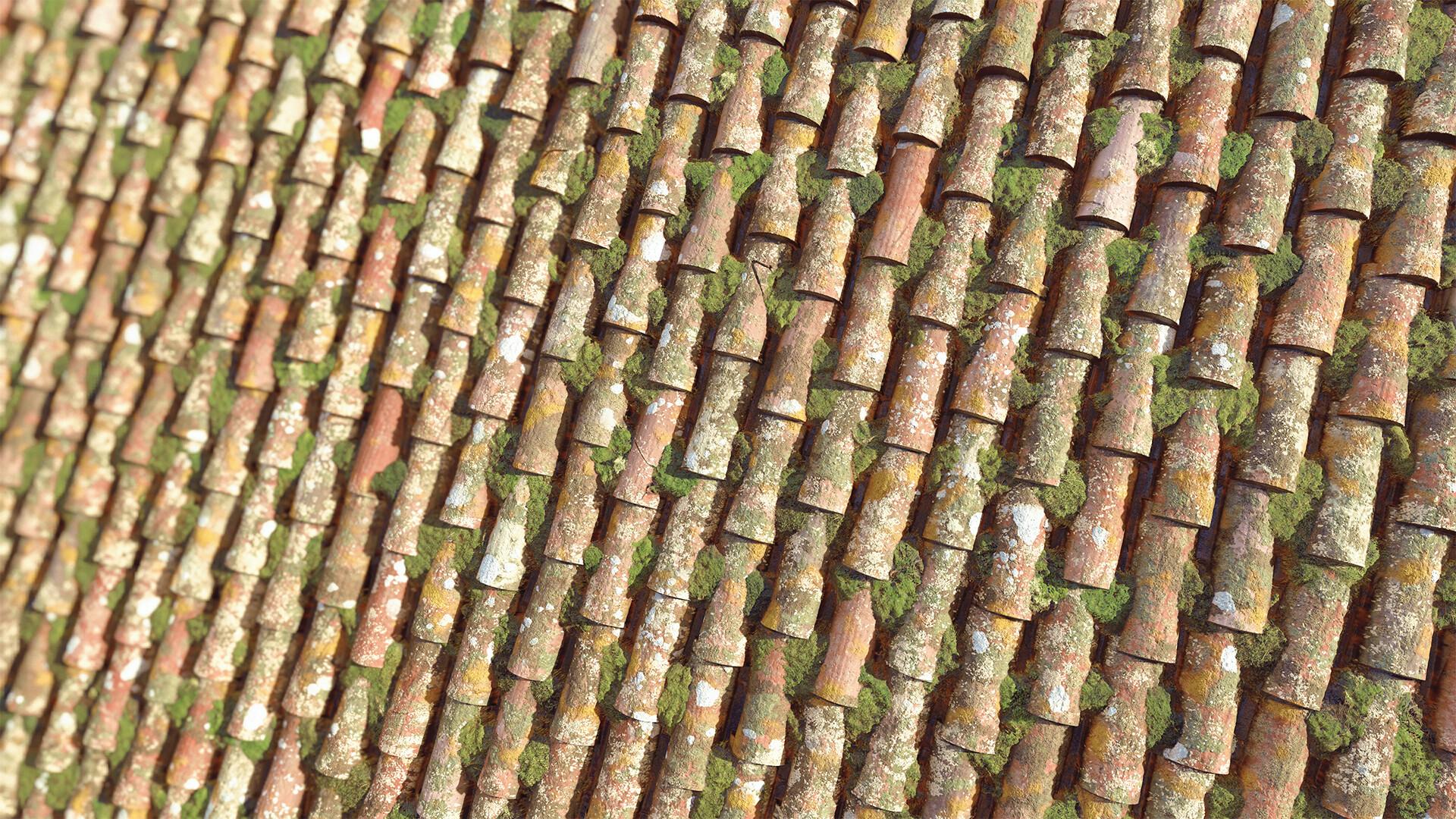 James lucas jameslucas rooftiles heroalt withdof graded 1080