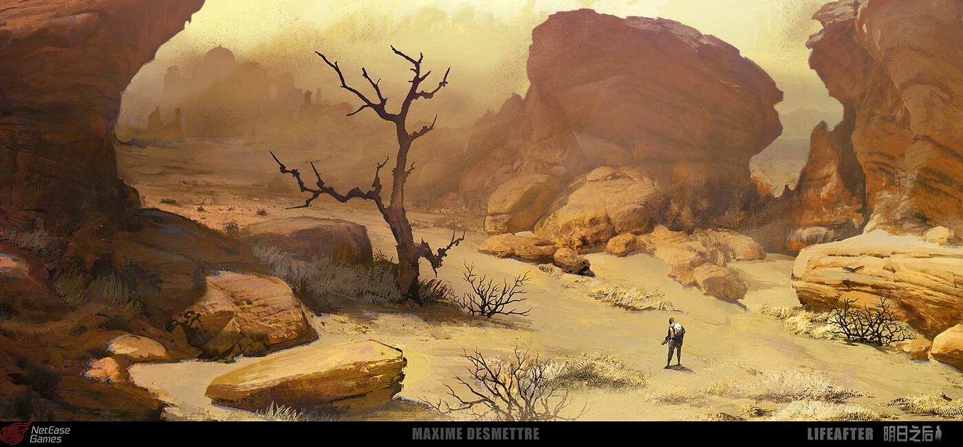 Maxime desmettre lifeafter desert canyonedge
