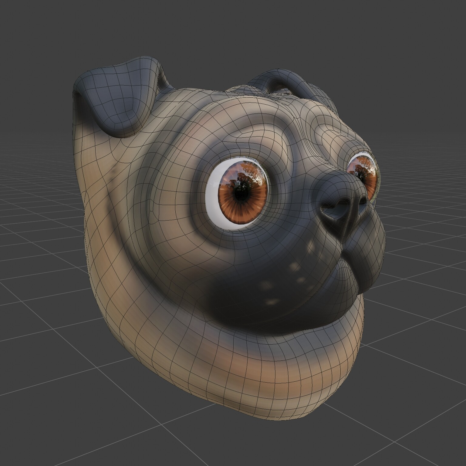 Dog head topology