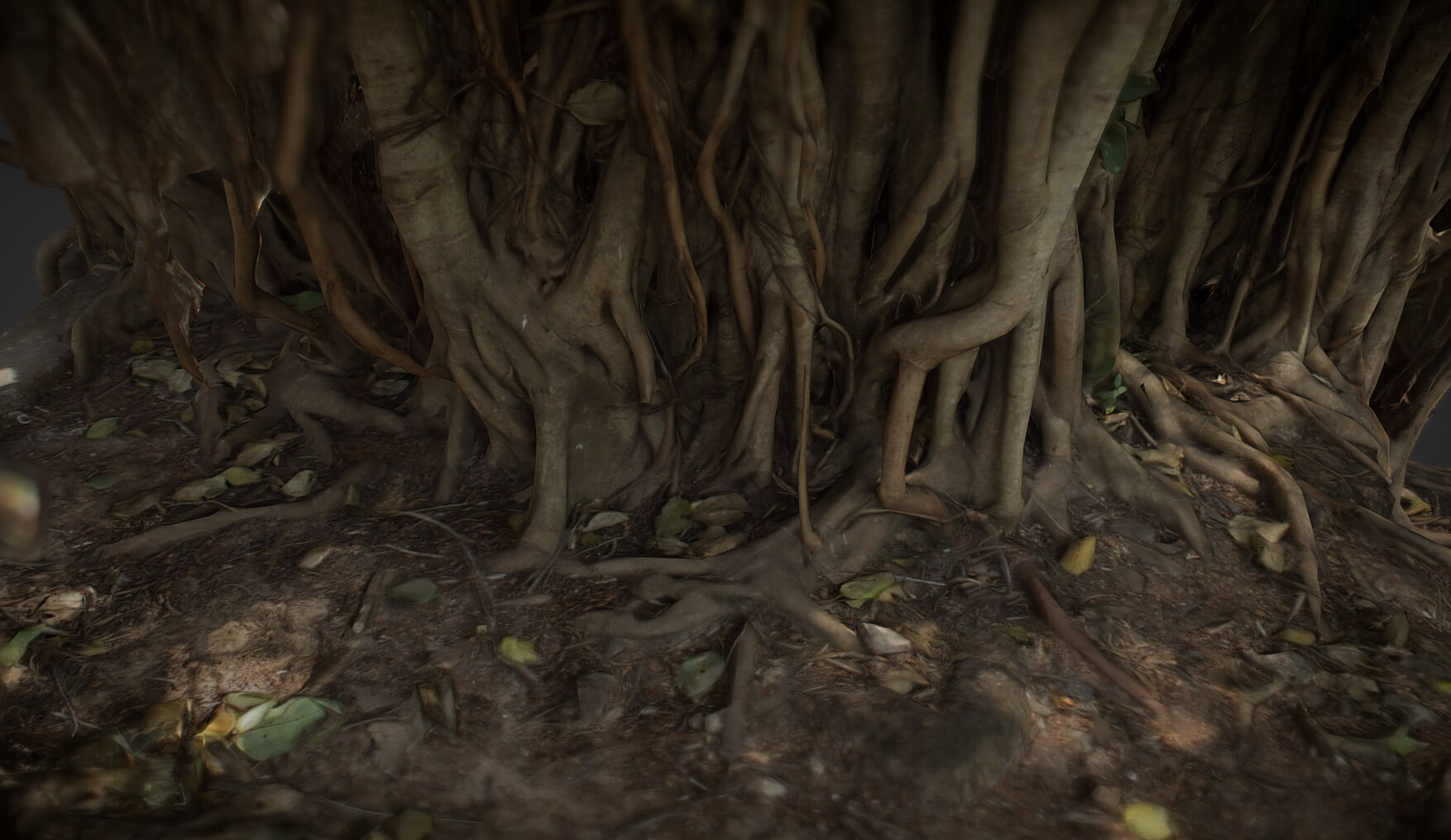 ArtStation - Big Banyan Tree, Dmytro Dokunov