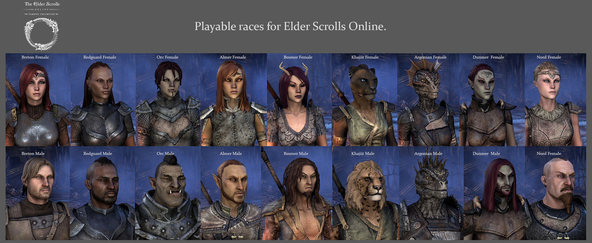 ArtStation - Character Customization system for Elder