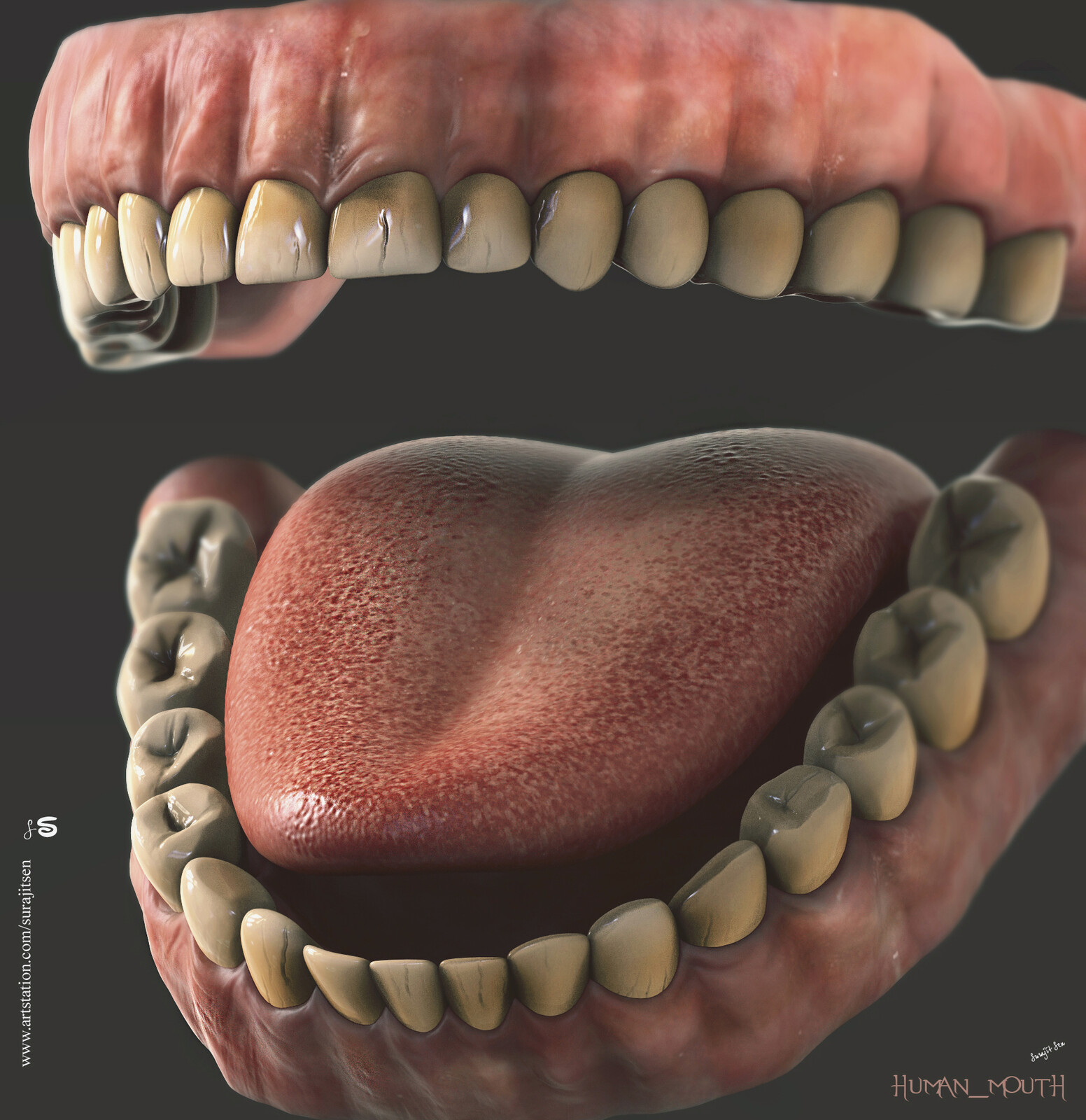 Tried to make a form of basic Human mouth.  One of my free time study... Background music- #hanszimmermusic