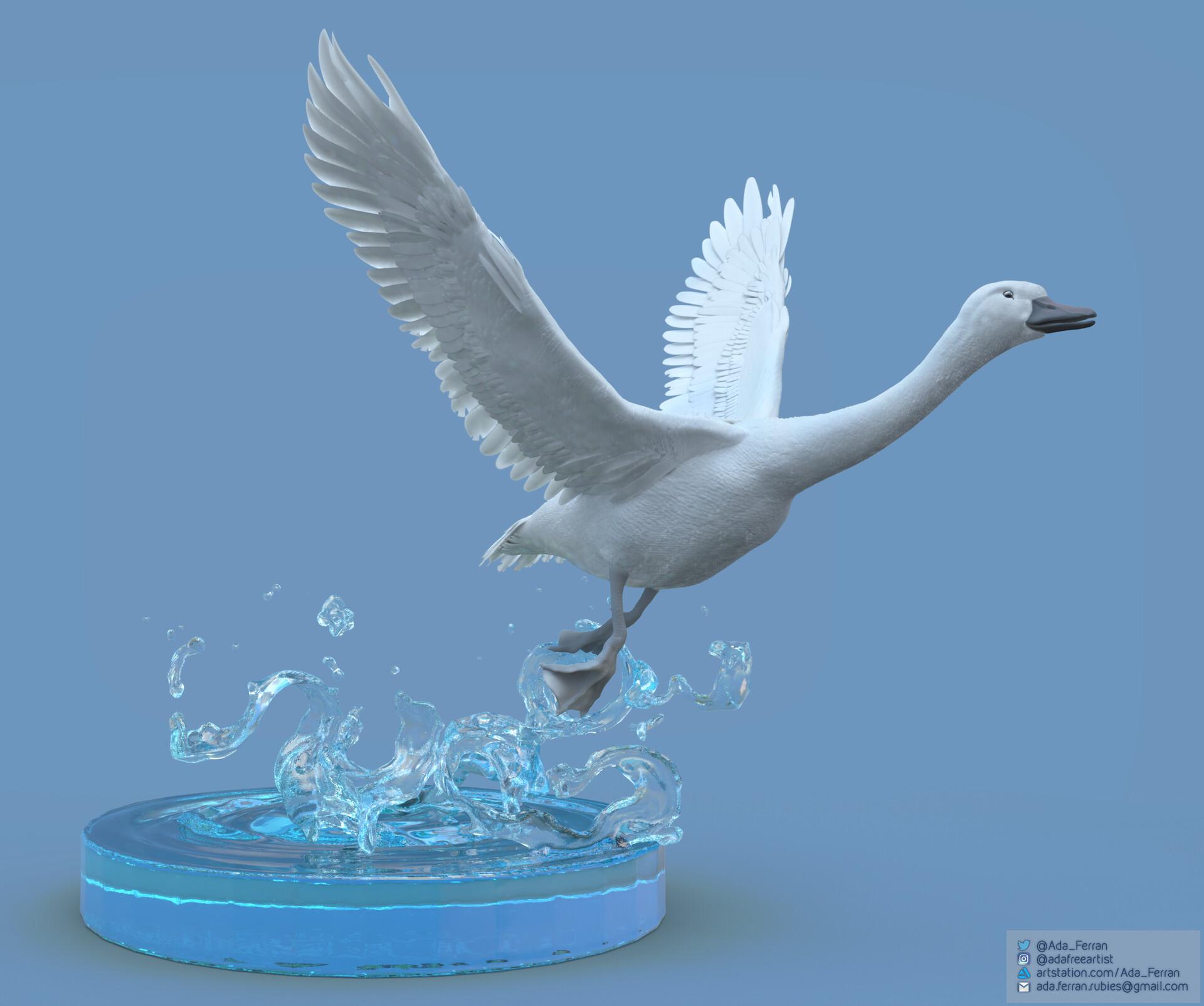 Ada ferran goose blue qux 2