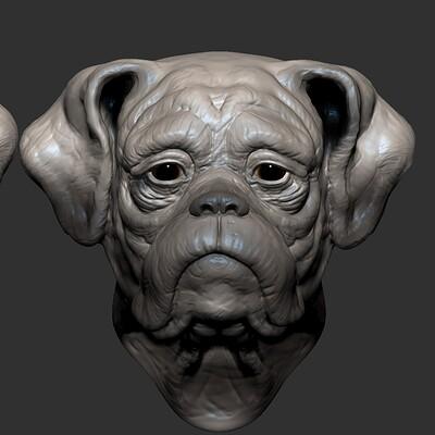 boxer speed sculpt WIP