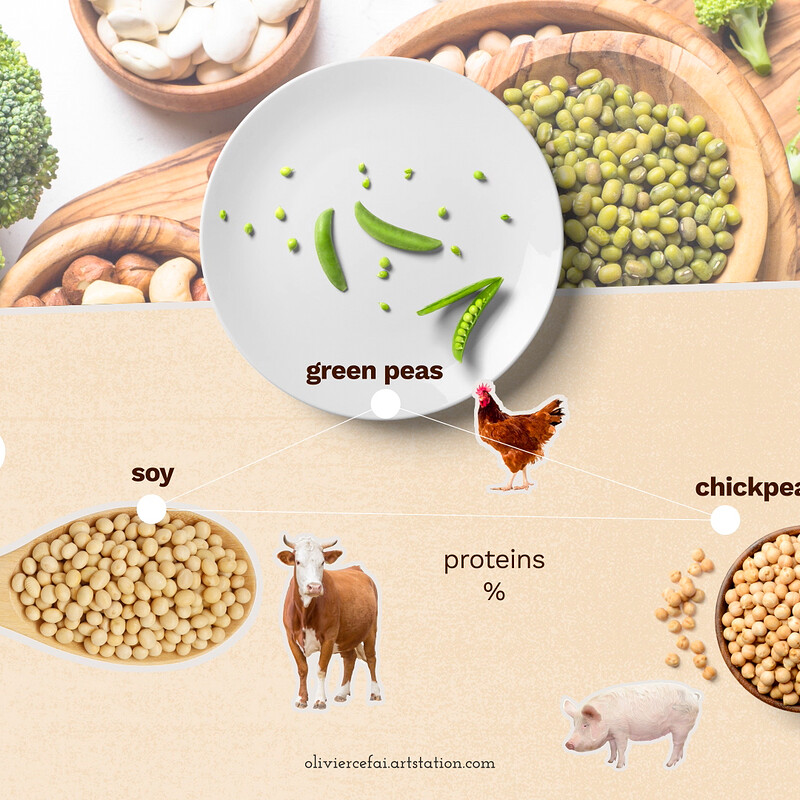 Styleframe - Vegan food explainer