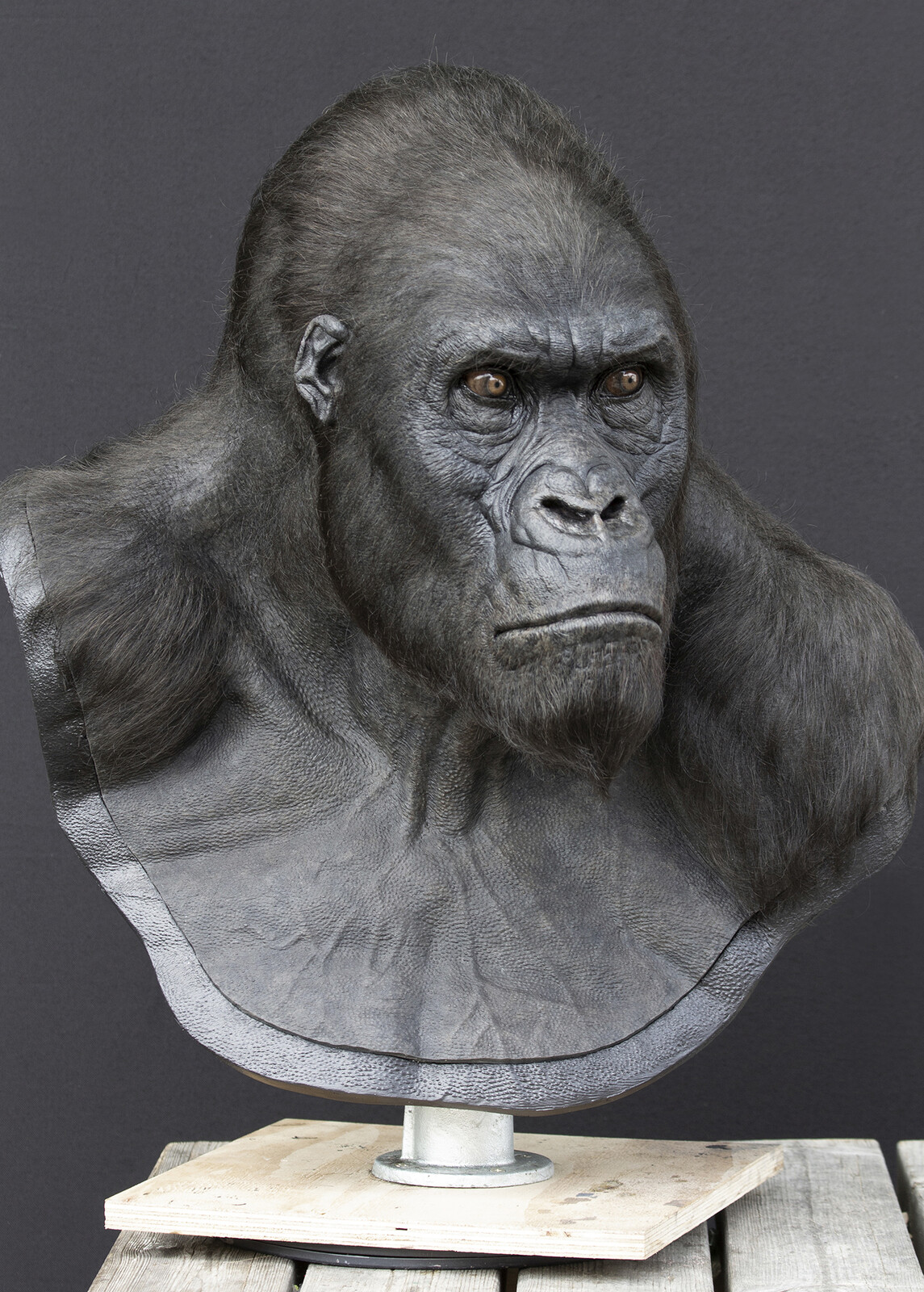 The Legend of Tarzan, 2014 (Akut Character Life Size Display Bust)