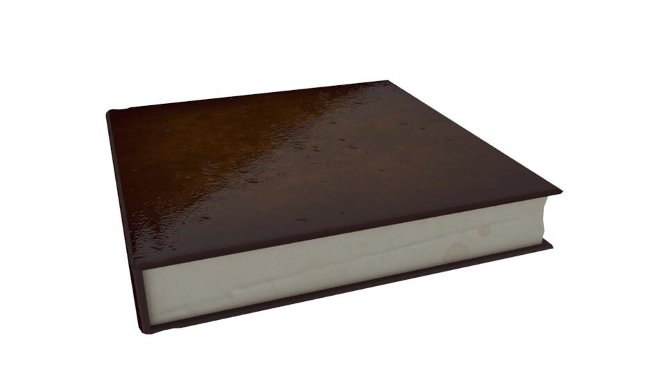 Shona robinson book v2 c1