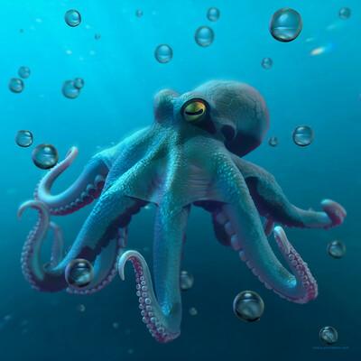 Ray rossetti octopus showcase