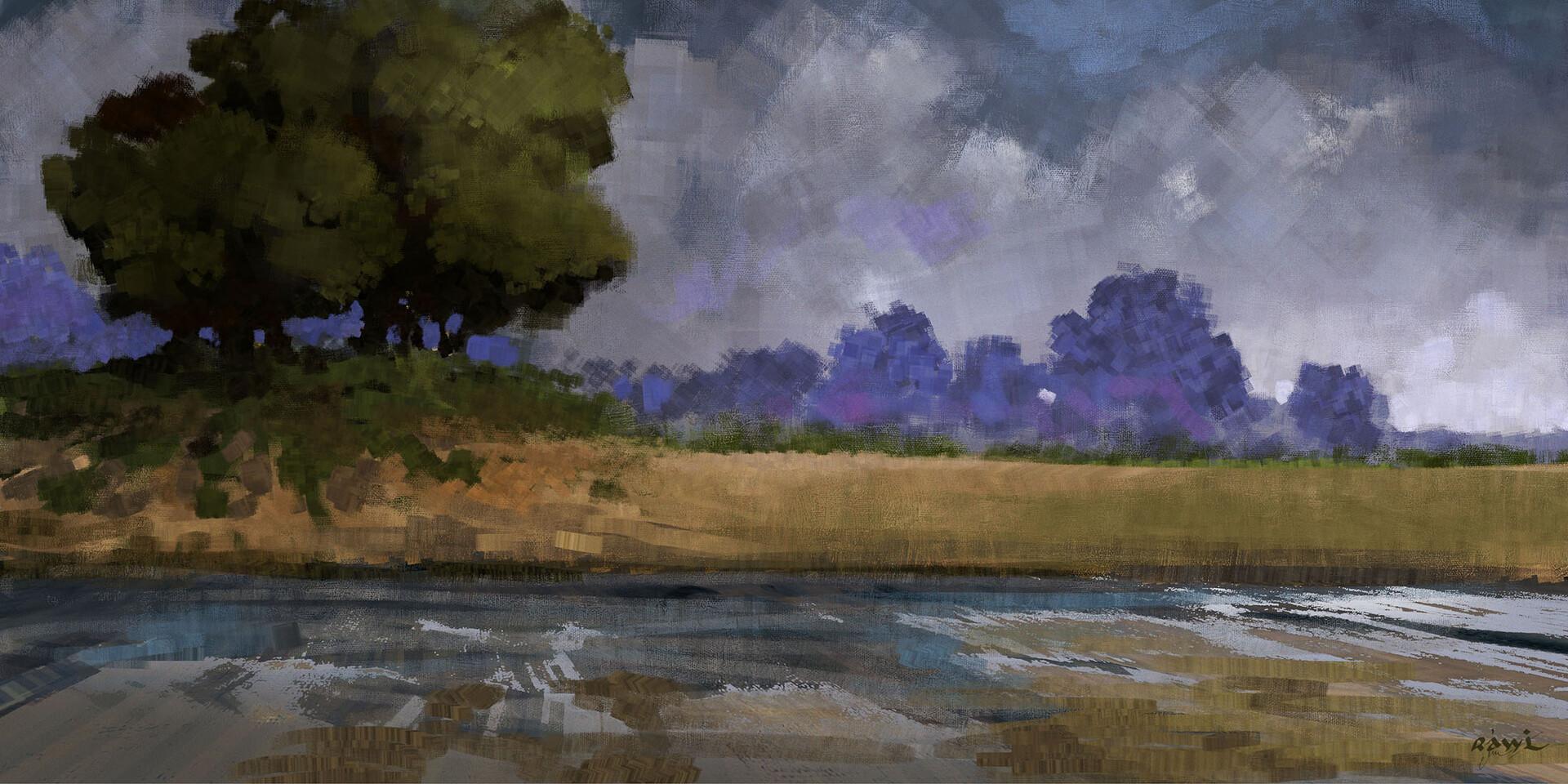 Ahmed rawi landscape4