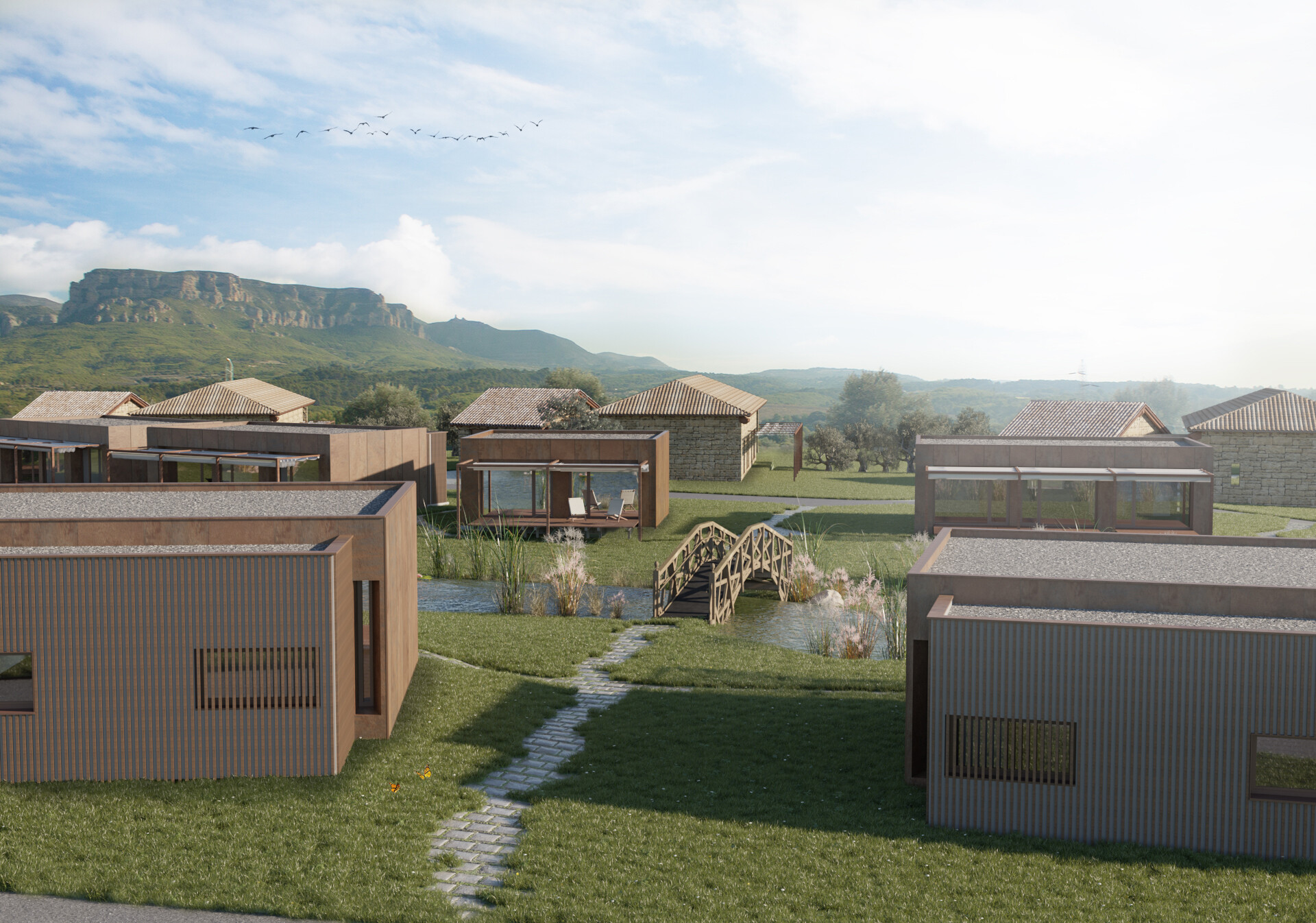 Baboon lab vista lago 2 new2