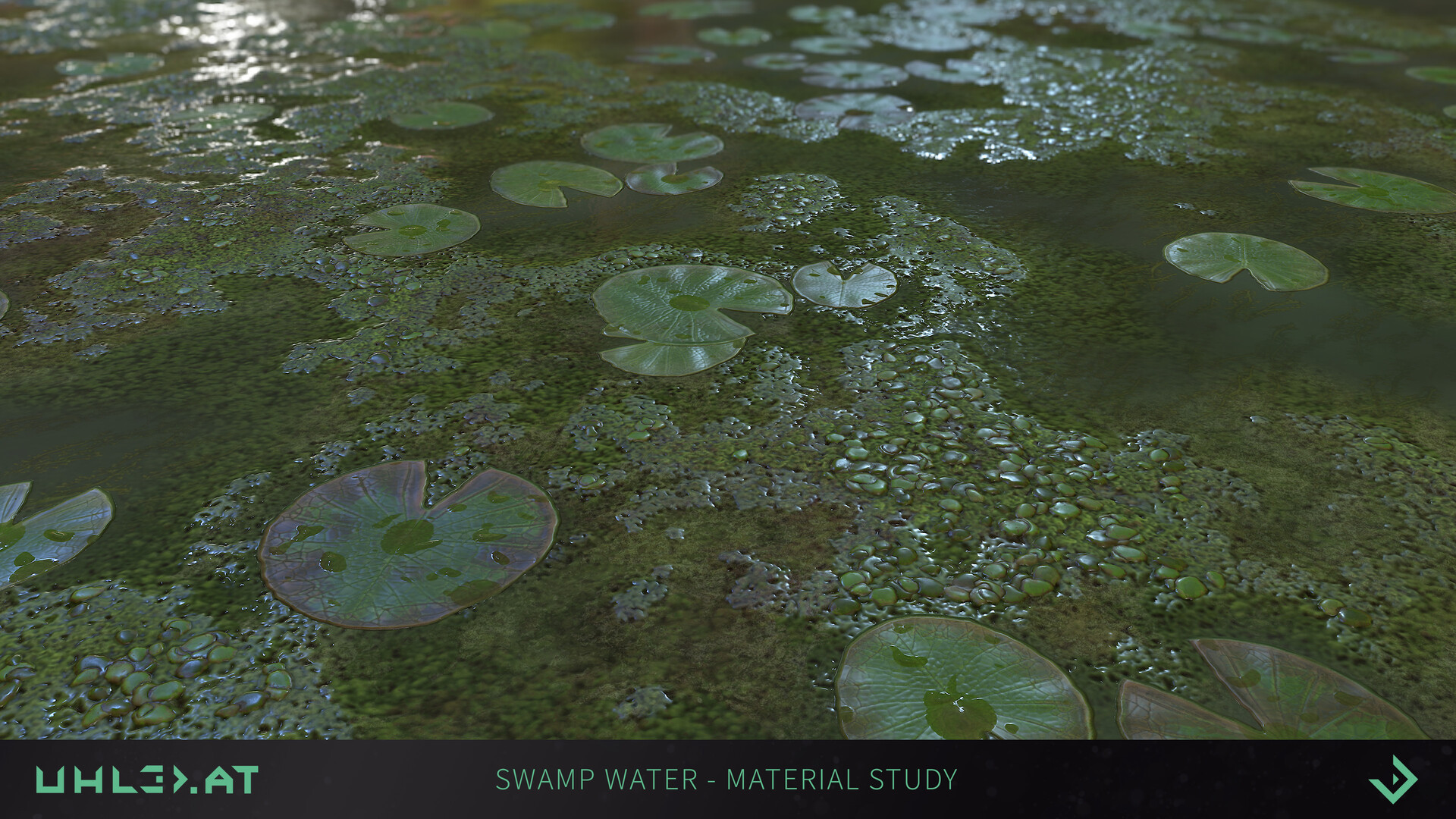 Dominik uhl swamp water 06