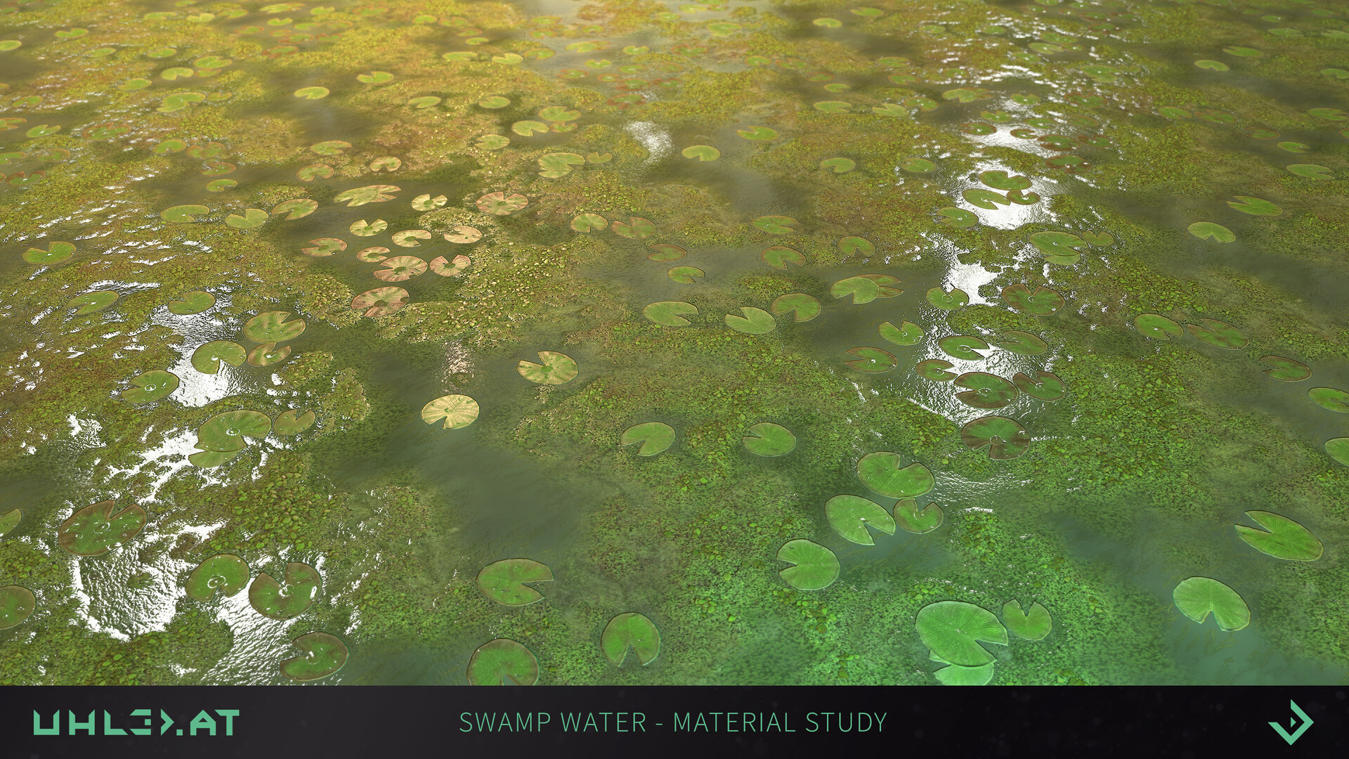 Dominik uhl swamp water 05