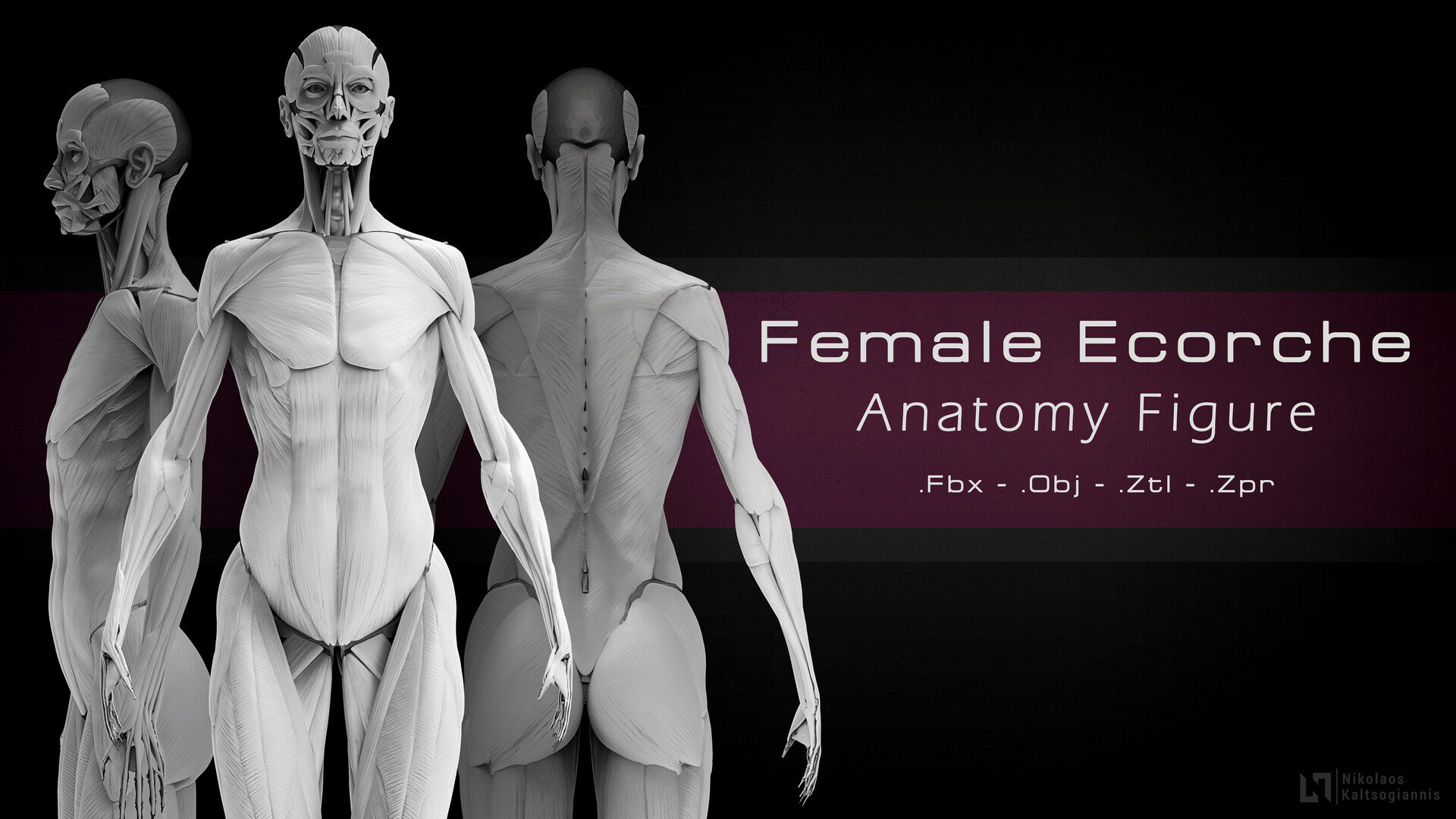 Visit My Store: https://www.artstation.com/nickoxart/store/BxqM/female-ecorche-anatomy-figure
