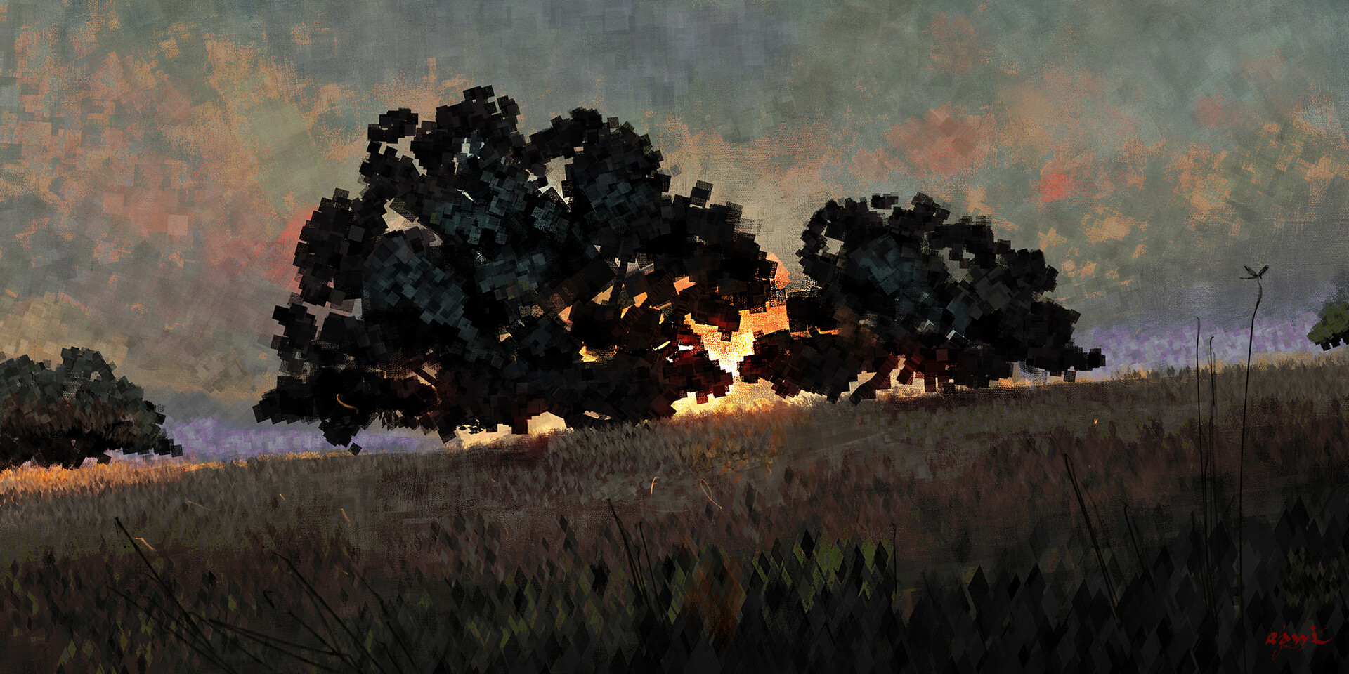 Ahmed rawi two trees sunnset low