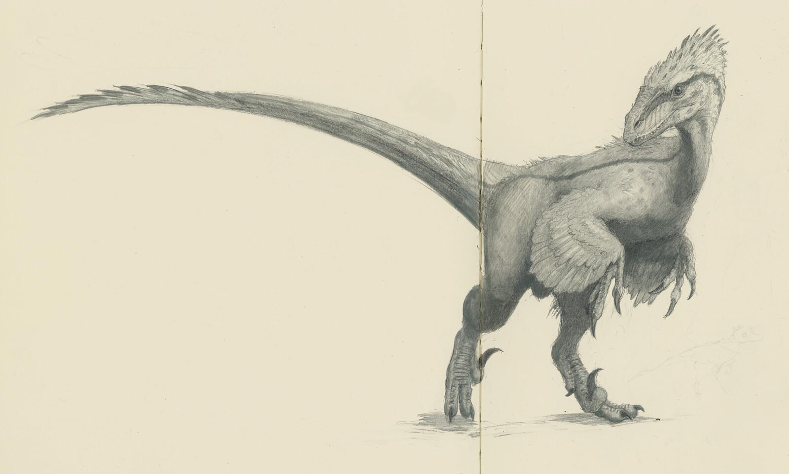 Dinosaurs on moleskine