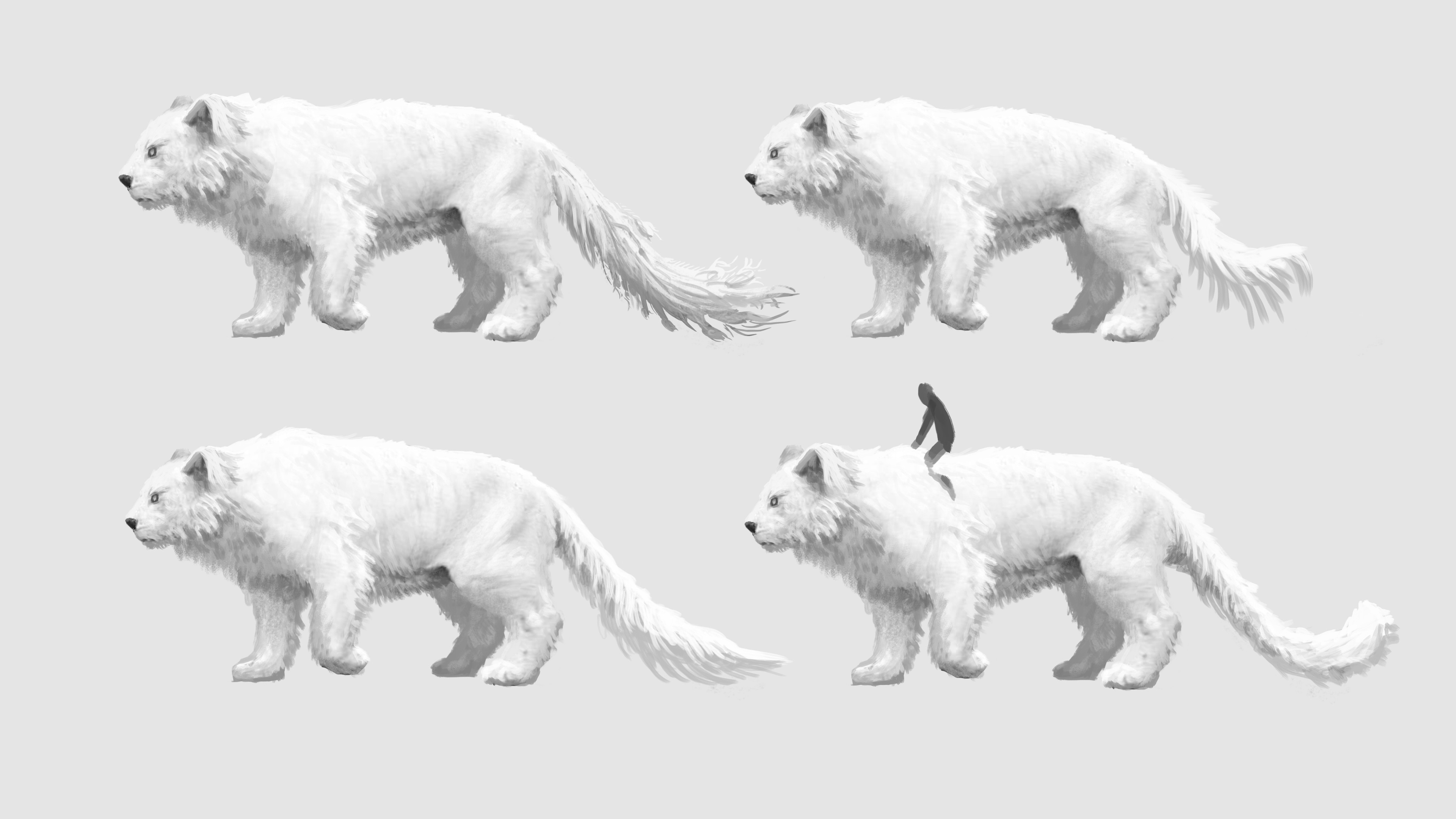 Small variations in proportions and tail