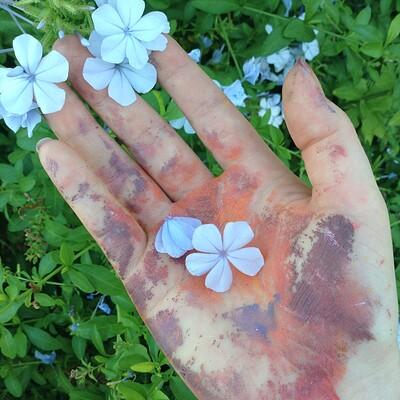 Nasika sakura my painty hand 2019 1