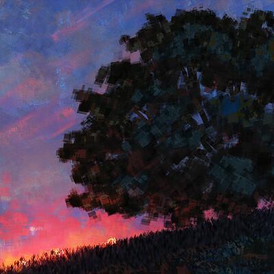 Ahmed rawi sunset 3