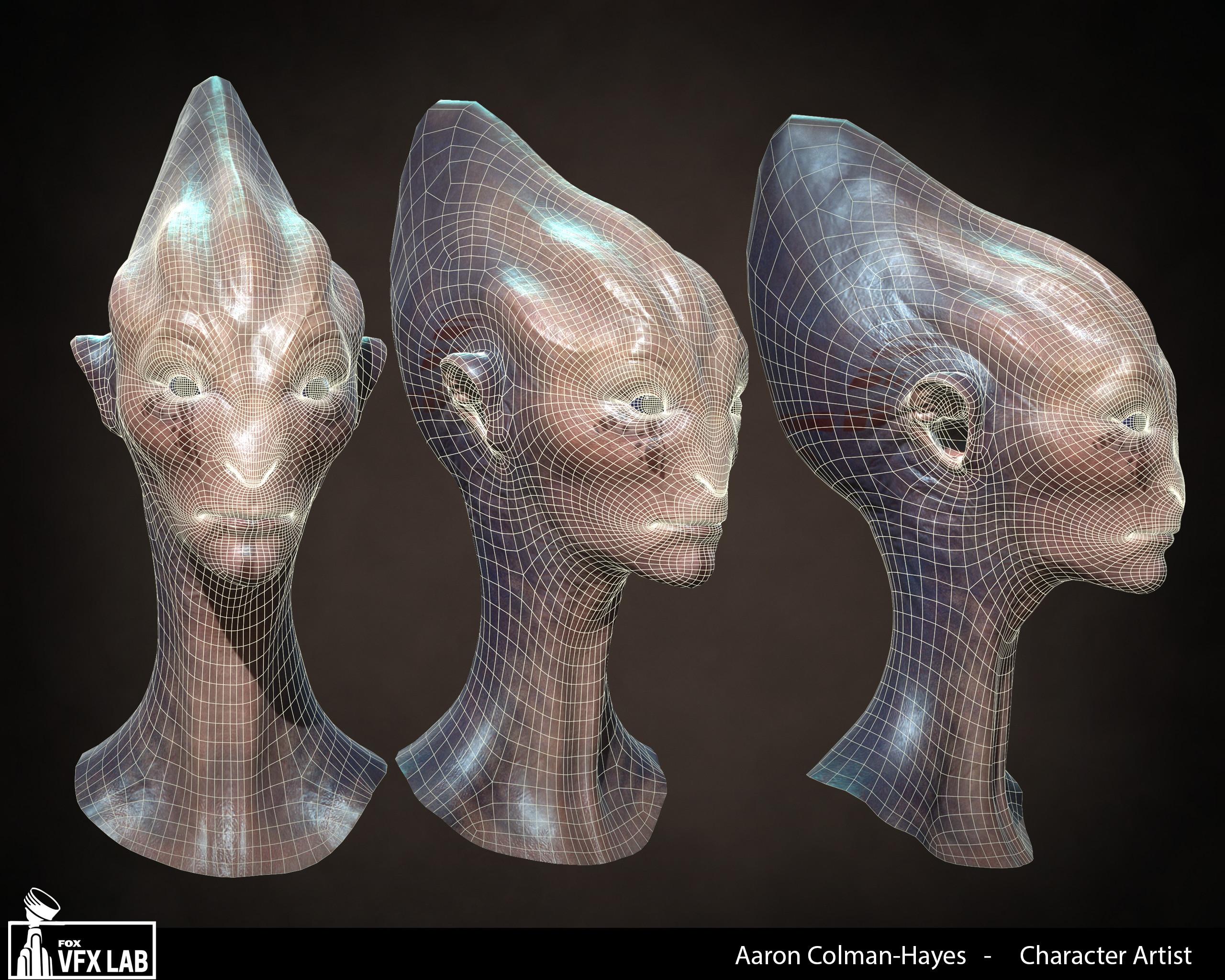 Facial topology.