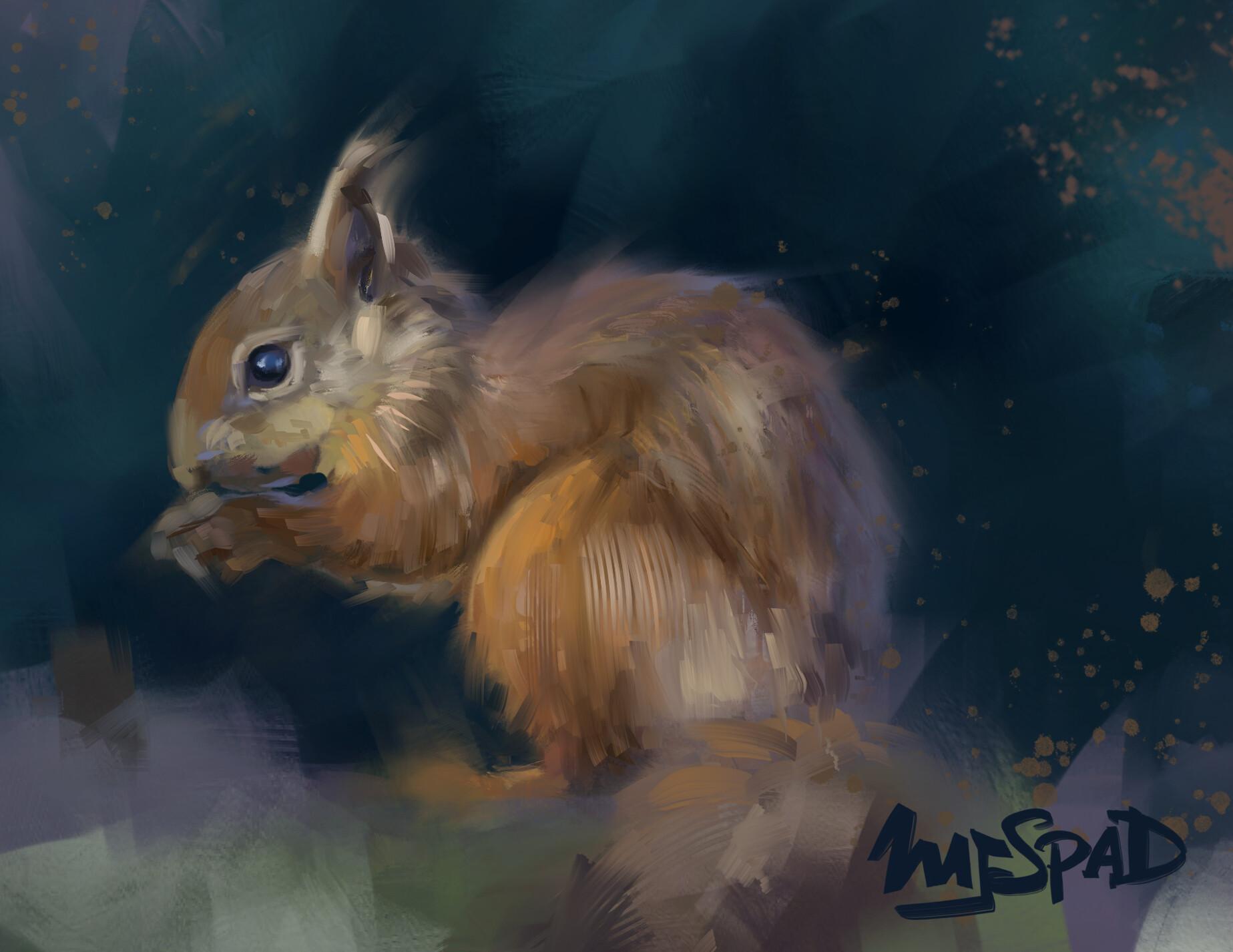 Mj venegas spadafora squirrel