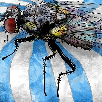 Marcus gabriel fors housefly