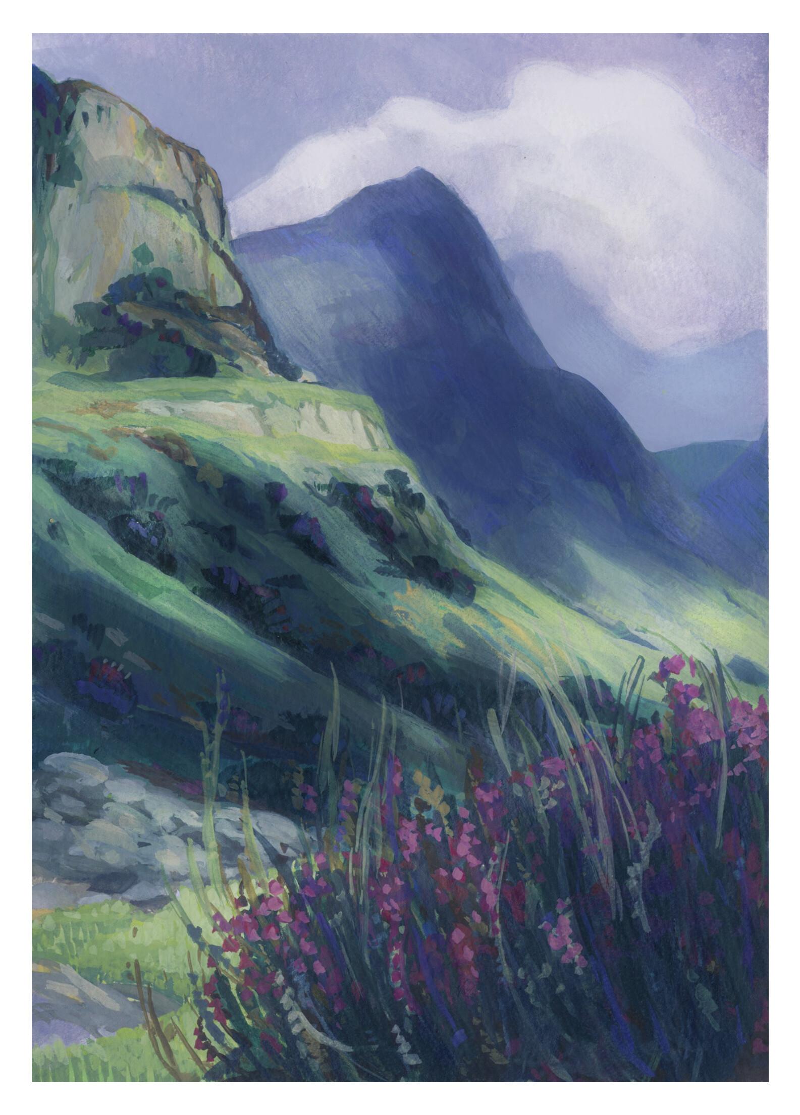 Tara williamson highlands